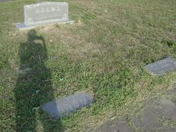 William Box Bill Adams, Jr