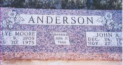 Johnnie Albert Anderson