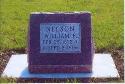 William Frederick <i>Wilhelm Fredrik Nilsson</i> Nelson