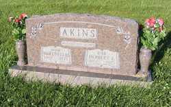 Herbert Lenard Akins, Sr