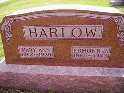 Mary Ann Harlow