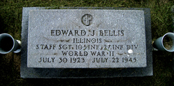 Edward J Bellis