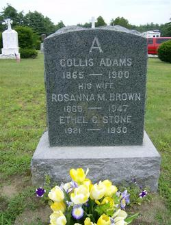 Rosanna M. <i>Brown</i> Adams