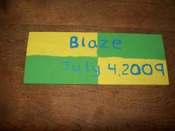 Blaze Choquette