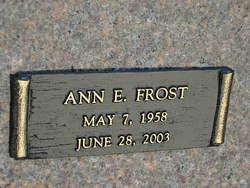 Ann E Frost