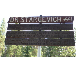 Dr. David Starcevic Cemetery #1