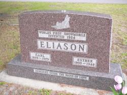 Carl Eliason