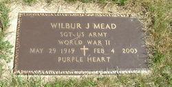 Wilbur John Mead
