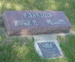 Charles Andrew Nelson