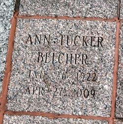 Ann <i>Tucker</i> Belcher