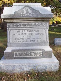 Tranquiline <i>Burton</i> Andrews