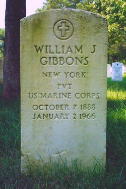 William J Gibbons
