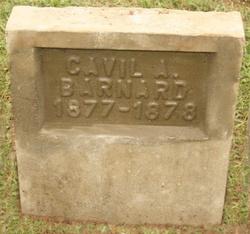 Cavil Anderson Barnard