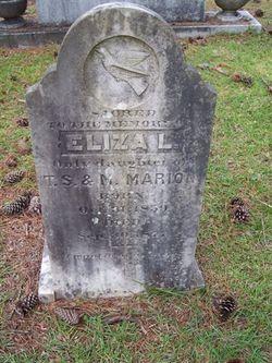 Eliza L. Marion