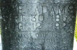 Priscilla Elizabeth <i>Prewitt</i> Adams