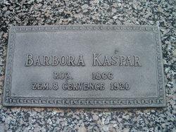 Barbora <i>Sedlacek</i> Kaspar