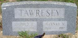 Harold Roderer Tawresey