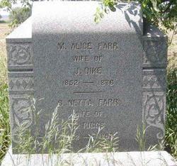 Sarah Netta <i>Farr</i> Riggs