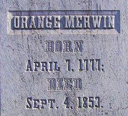 Orange Merwin