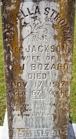 Rose Ellen <i>Jackson</i> Bozard