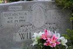 Sarah Elizabeth Annie <i>(Arick)</i> Williams