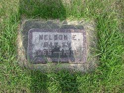 Nelson E Bailey
