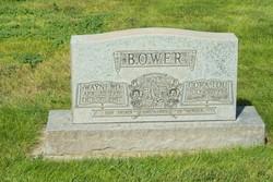 Wayne D Bower
