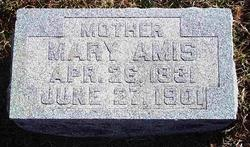 Mary Jane Polly <i>Hendrickson</i> Amis