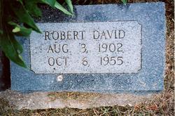 Robert David Amis