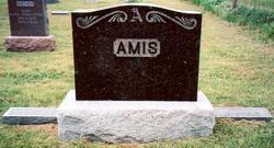 William Bowlin Amis