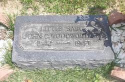 John Charles Woodworth, Jr