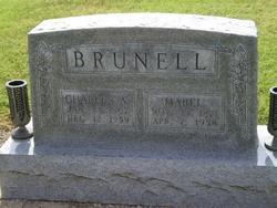 Charles Albert Brunell