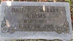 Harley Adams