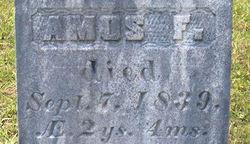 Amos F. Andrews