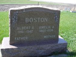 Amelia A Boston