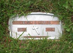 Aaron L Hayes