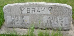 John Lewis Bray