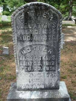 Mary Polly <i>Austin</i> Atkins