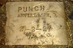 Arvilla Punch, Jr