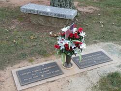 Dora LaVerne <i>Davis Brown</i> Chambers