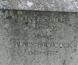 Agnes <i>Hitchcock</i> Bush