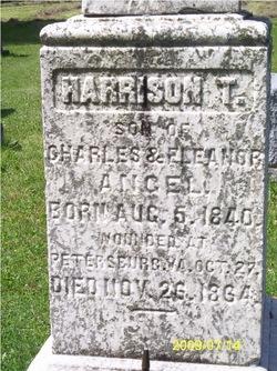 Harrison T Angel