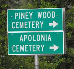 Apolonia Cemetery