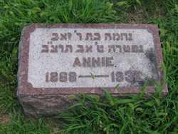 Annie <i>Perlik</i> Feinstein