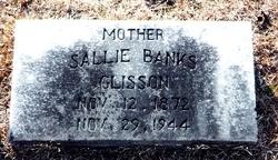 Sarah Drucilla Sallie <i>Banks</i> Glisson