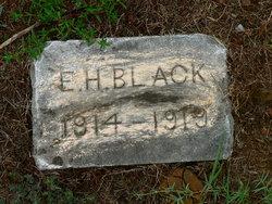 E. H. Black