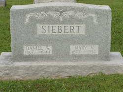 Daniel W Siebert