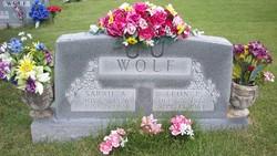 Sarah Alice <i>Simmons</i> Wolf