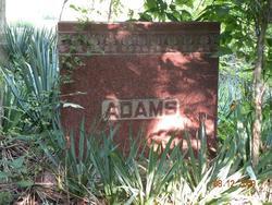 William Greer Adams