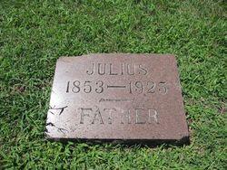 Carl August Julius Krenzin